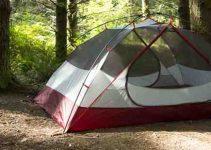 camp summer